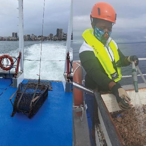 Surveying Marine Habitats