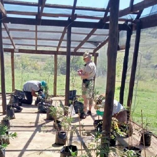 Surveying Ukhahlamba Drakensberg